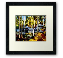 Sunlight and rocks Framed Print