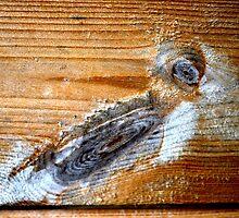 Wood Art Calendar by patjila