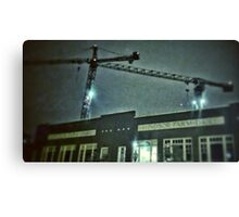 cranes in the night Canvas Print
