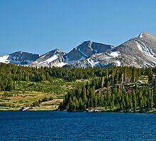 Mountain High by Helen Vercoe