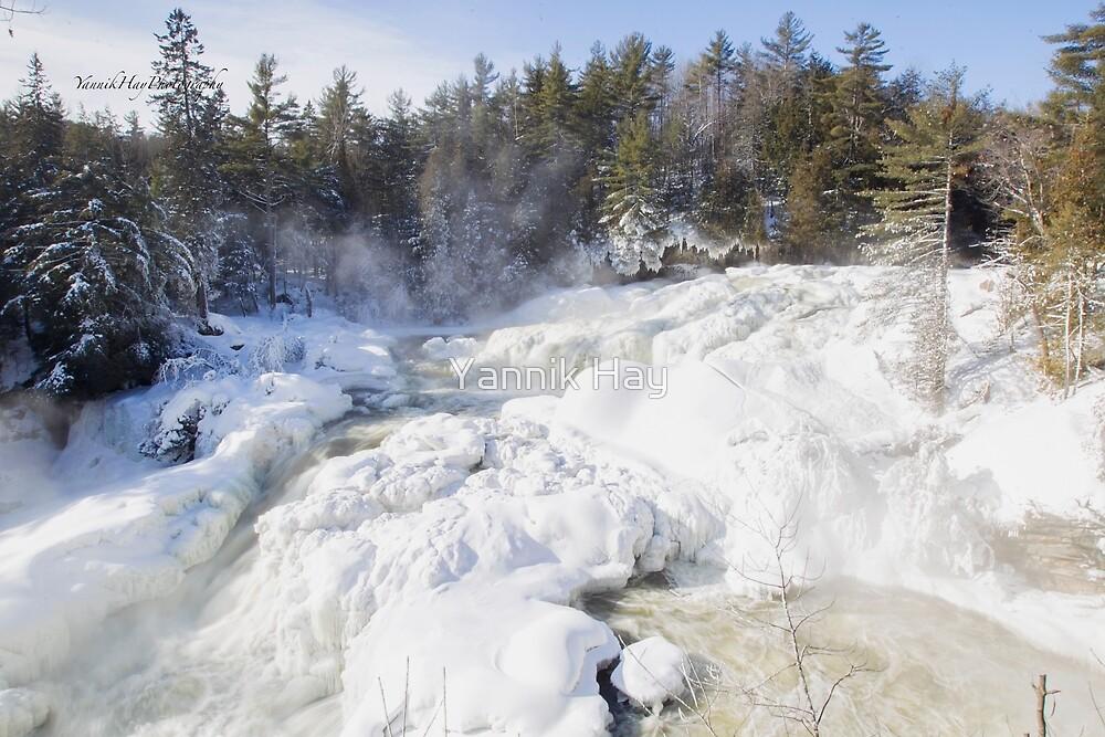 Frozen Landscape  by Yannik Hay
