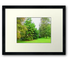 A Touch Of Xmas Framed Print