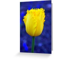 The Tulips Have Arrived!! Greeting Card