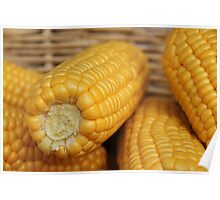 Ever so sweet, corn in a basket. Poster