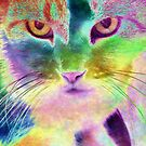 The Psychedelic Feline by Brian Gaynor