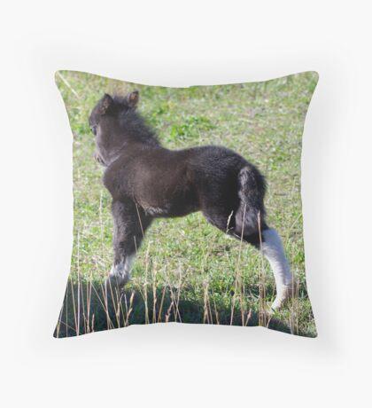 New Foal Throw Pillow