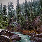 Early Snow ~ Upper Quartzville Crek~ by Charles & Patricia   Harkins ~ Picture Oregon