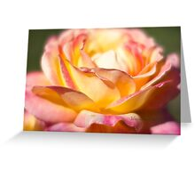 Rest in piece my friend - All Proceeds to Canadian Breast Cancer Foundation - Peace Roses Greeting Card