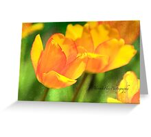 Pair of Tulips Greeting Card