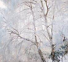 Frosty Forest by LaurieY