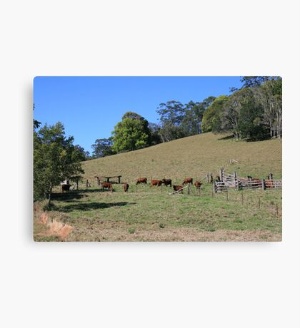 An Aussie Rural Landscape Canvas Print