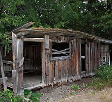 Abandoned Chicken Coop by KansasA