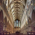 Wells Cathedral by Clive