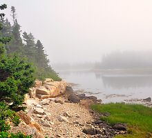 Fog, Schoodic Point, Acadia National Park, Schoodic Peninsula, Maine by fauselr