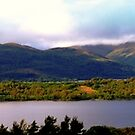 Inchmurrin Panorama by Susan Dailey