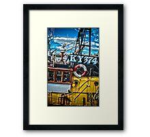 KY 374 Framed Print