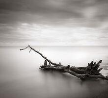 Swept Away by Steve Silverman