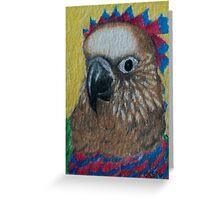Hawk Headed Parrot Greeting Card