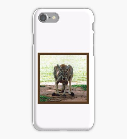 Kangaroo iPhone Case/Skin