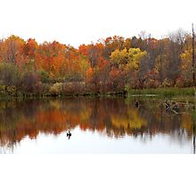 Autumn Serenity Photographic Print