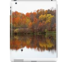 Autumn Serenity iPad Case/Skin