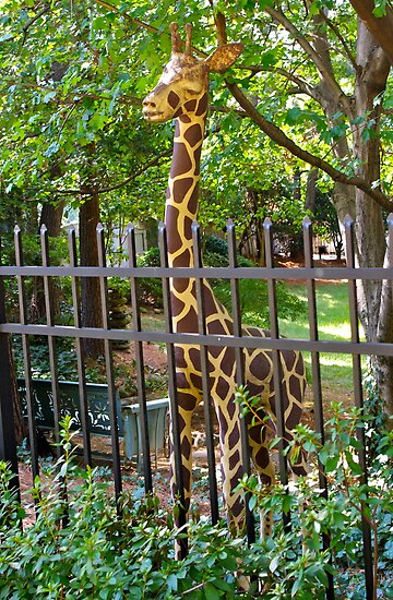 Giraffe Guarding Suburbia by Martha Andreatos