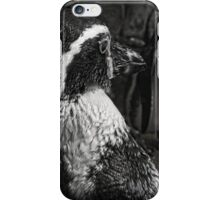 Humboldt Penguin, Black and White iPhone Case/Skin