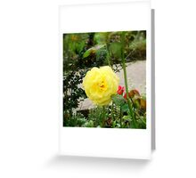 A Touch Of Yellow Greeting Card