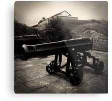 Old Canon Metal Print