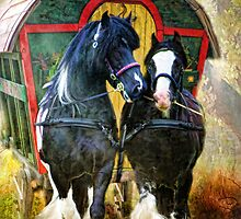 Travellers  by Trudi's Images