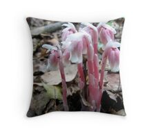 Indian Pipe (monotropa uniflora) Throw Pillow