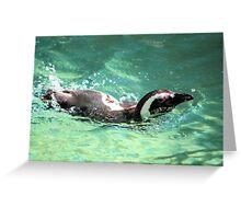 Swimming Along Greeting Card