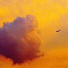 Up and away... by Alberto  DeJesus