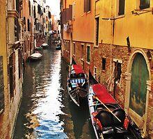 Gondolas - Venice by Diana Bell