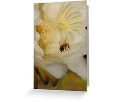 Don't Worry, Bee Happy Greeting Card
