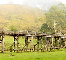 Foggy Trestle Bridge, Timboon, Victoria, Australia by Michael Boniwell