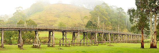 Foggy Trestle Bridge, Timboon, Victoria, Australia by Michael Boniwell