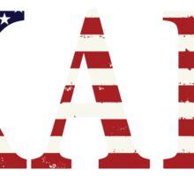 KAPi Americana (white) Sticker