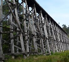 Stony Creek Trestle Bridge by Vicki73