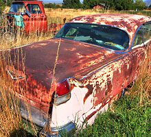 Old car - Cadillac by zumi