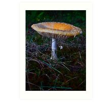 Mushroom Kingdom (7409) Art Print