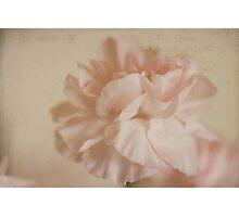 ~the unceasing effort~ Photographic Print