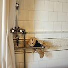 bath time  by Karen E Camilleri