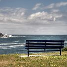 Benched at Long Bay by Jason Ruth