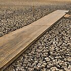 All Dried Up - Mudflats of Lake Wendouree, Ballarat by clearviewstock