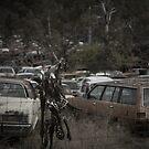 Roadkill by Mark Elshout
