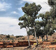 Umberumberka Creek - Silverton NSW by Bev Woodman
