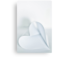 purely ~ i love you Canvas Print