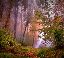 Fog On The Willamette River by Charles & Patricia   Harkins ~ Picture Oregon