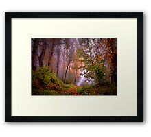 Fog On The Willamette River Framed Print